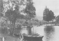Cwmllecoediog Lake 1860s