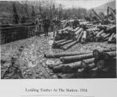 Loading Timber at Aberangell Station 1916