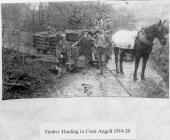 Timber Hauling in Cwm Angell 1914-20