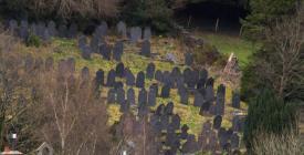 Rehoboth graveyard