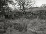 Some old farms on the lower slopes of Tarren...