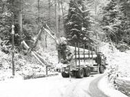Forest timber lorries by Evans Bridge