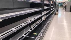 Empty Shop Shelves, Vegetable and Meat Aisle,...