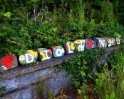 Diolch NHS, Ysbyty Bronglais, Aberystwyth,...