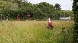 Nature taking over, Aberdaron playground,...