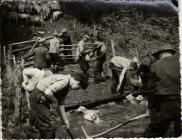 Sheep washing, Cwmlicky, Pontypool