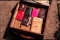 The diaries of F W Edmondes 1861-1918