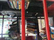 Roath Park Lockdown Library (2)