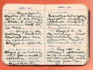 Ymweld á Llangefni, dyddiadur 1910 gan Lucy White