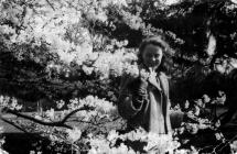Rose Hewlett amongst the blossom at Mumbles...