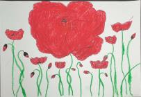 Poppy drawing by Hollie Billington, 2020