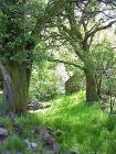 Pen-y-wern Farm, Upper Twrch Valley, Breconshire