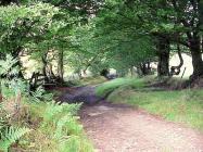 Swffrydd-fach Farm, near Crumlin, Monmouthshire