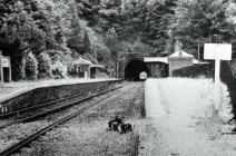 Usk Railway Station, early 1900
