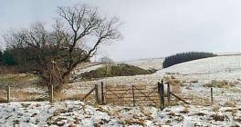 Snow Scene near Fan Gyhirych Brecon Beacons,...