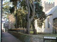 Church Place, Neath Glamorgan