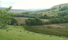 Exploring Cwm Gors and Cwm Clydach Glamorgan