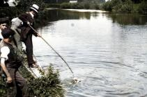 Llanbadoc Usk River sheep dipping, early 1900 ...