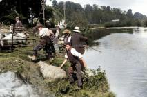 Llanbadoc Usk River sheep dipping, early 1900 -...