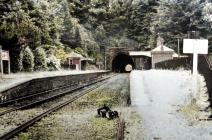 Usk Railway Station, early 1900 - colourised