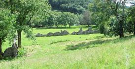 The Abbey at Abbeycwmhir, Radnorshire