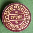 Officer's badge from the 1919 Corwen...