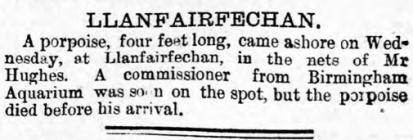 Llanfairfechan - Article from the Carnarvon and...