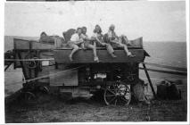 Women's Land Army During Harvest Time