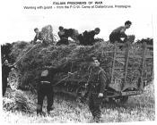 Italian POW at Camp 48, Presteigne
