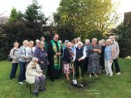 Clwyd-Denbigh WI Planting Trees