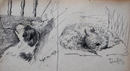 Dog and cat, Sep 30th, 1893 by Annie Cummings