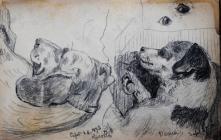 Sept 26th 1893 (Giotto) & Venie (Sept 27th 1893...