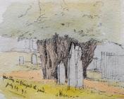 Yew Tree in Gresford Churchyard July 29 1891 by...