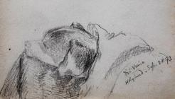 Mel- Venie, Holyhead Sep 28th, 1893 by Beatrice...