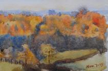Lane with trees, November 7th - December 6th,...
