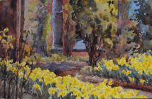 Daffodils, April 14th, 19th by Beatrice Cummings