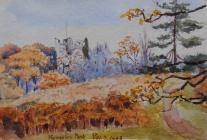 Hawarden park, Nov 7th, 1903 by Beatrice Cummings