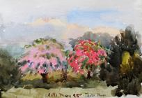 Astle - Thorn trees, May 25th by Beatrice Cummings