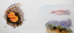 Lichen and clouds by Annie Cummings
