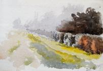 Lane & Wall, Dec 15th, 1897 by Annie Cummings