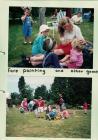 Straeon St Nicholas, Trefaldwyn - picnic...