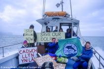 Friends of Cardigan Bay Oil Exploration Protest