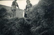 Land Army women making hay