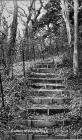 Golden Stairs, Porthkerry
