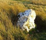 Quartz standing stone, Elan Valley