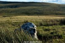Quartz standing stone with landscape view