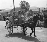 Pony and cart at Rhayader Carnival, ?1950s