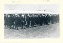 Image WRNS / Wren on parade Dale Pembrokeshire