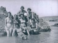 WRNS / Wrens at Marloes beach Dale Pembrokeshire