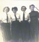 Image of WRNS / Wrens Dale Pembrokeshire